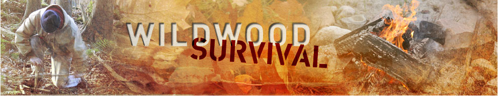 Wildwood Survival website